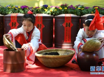 北京八大处茶文化节再现传统封茶大典